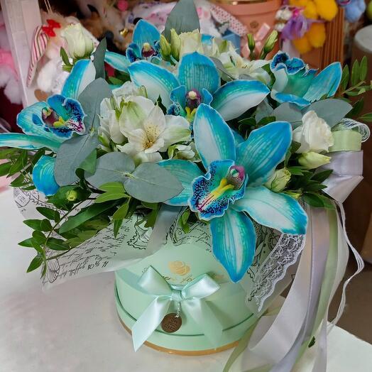 Космическая орхидея в коробочке