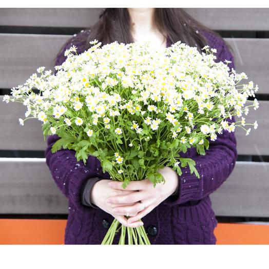 Ромашка кустовая: букеты цветов на заказ Flowwow