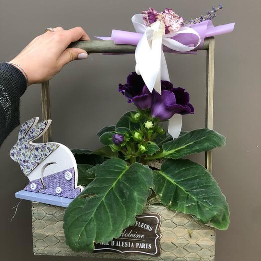 Глоксиния в декоре: букеты цветов на заказ Flowwow