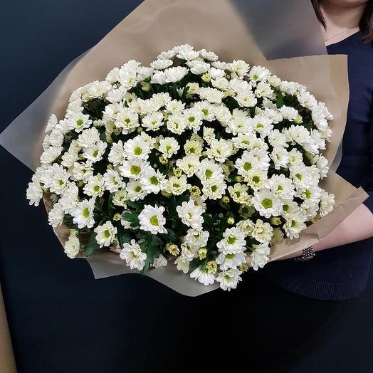 Сантиния: букеты цветов на заказ Flowwow