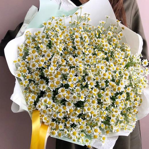 """Ромашковое поле"": букеты цветов на заказ Flowwow"