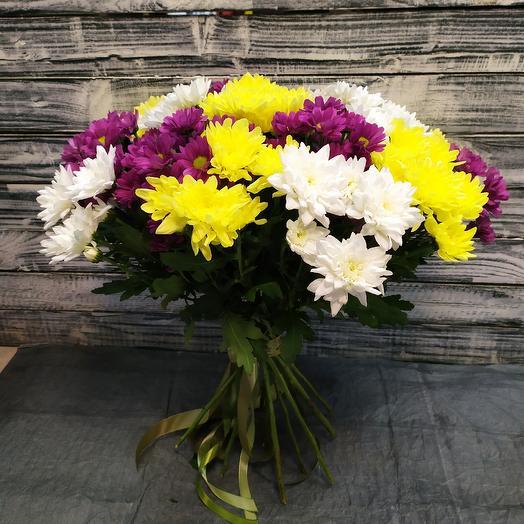 15 кустовых хризантем: букеты цветов на заказ Flowwow
