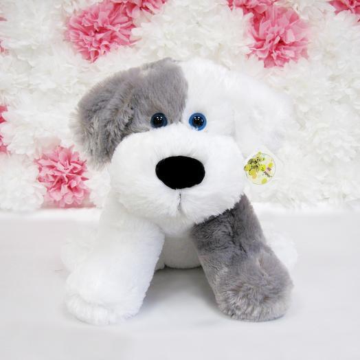 Собака Бим 50 см