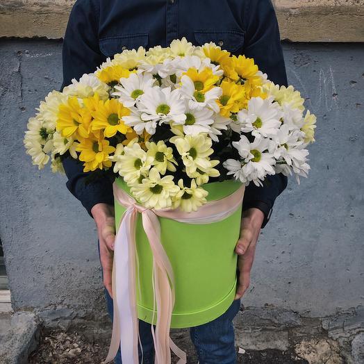 Коробочка из 13 хризантем