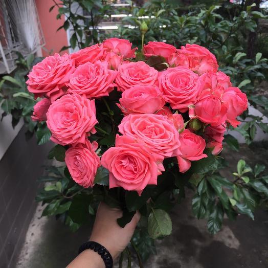 Букет из 11 коралловых кустовых роз: букеты цветов на заказ Flowwow