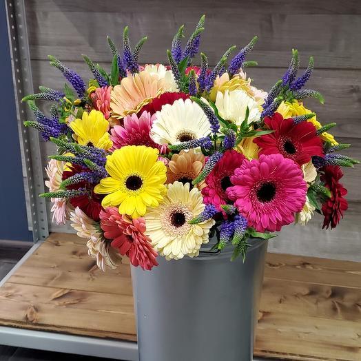 Гербера с вероникой: букеты цветов на заказ Flowwow