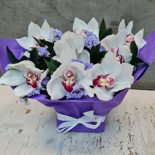 Орхидея Бум