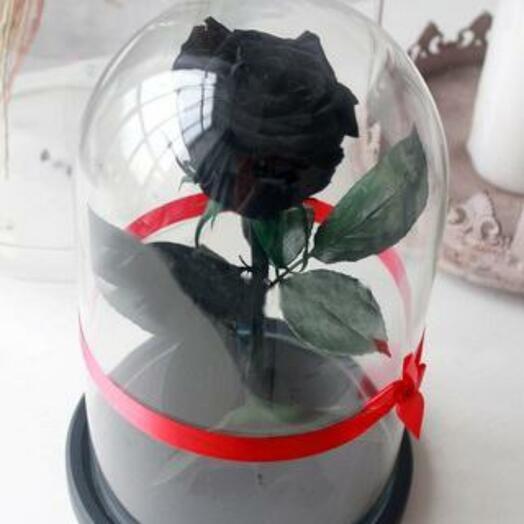 Роза в колбе Premium Черная