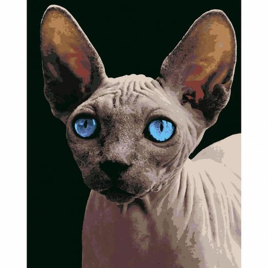 Картина по номерам Сфинкс с голубыми глазами