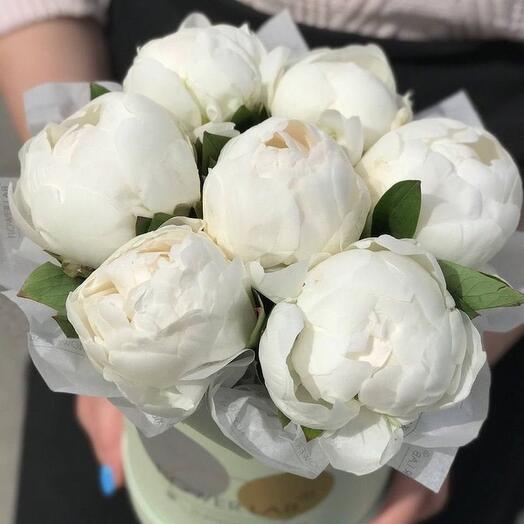 White peony ice cream France in a hatbox