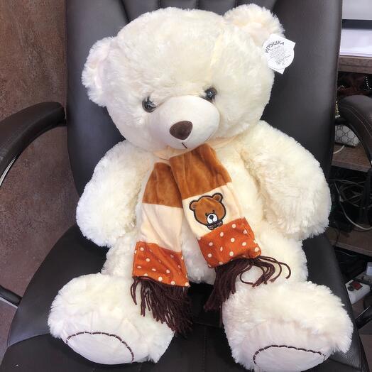 Медведь Антон