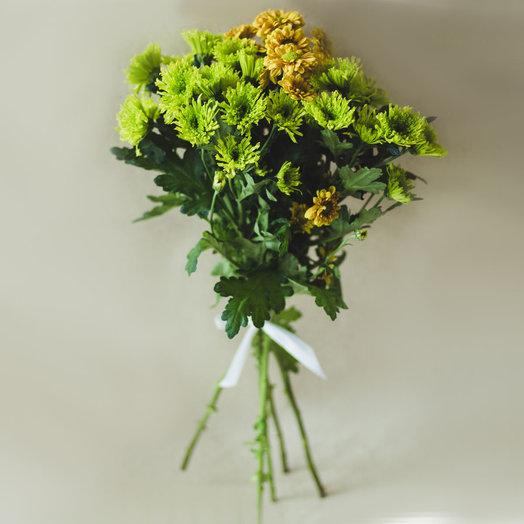 5 хризантем: букеты цветов на заказ Flowwow