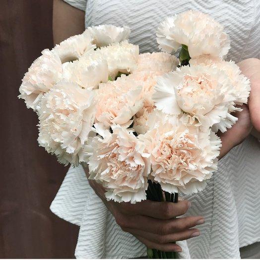Букет из 19 белых гвоздик: букеты цветов на заказ Flowwow