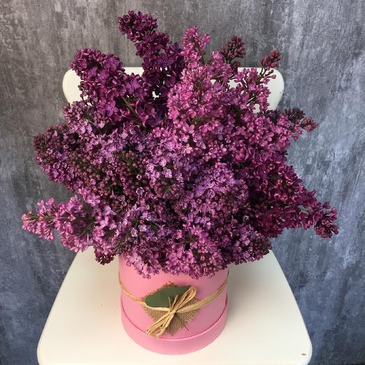 Сиреневый фонтан: букеты цветов на заказ Flowwow