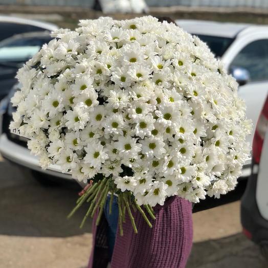 """Букет из Хризантем """"Пушистое счастье"""": букеты цветов на заказ Flowwow"""