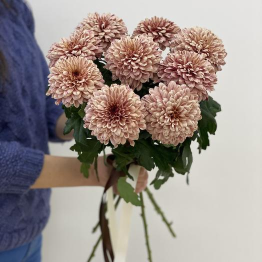 Монобукет «Капучино»: букеты цветов на заказ Flowwow