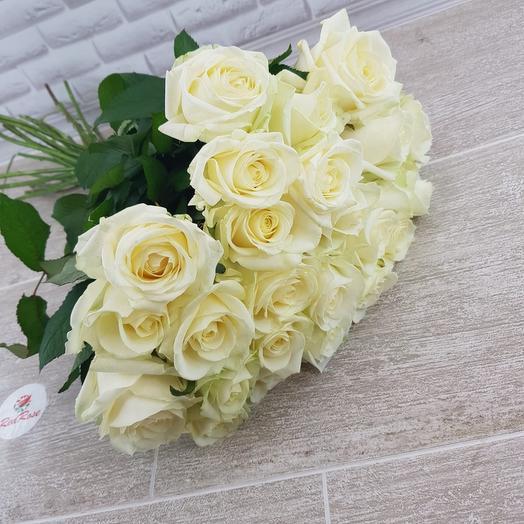 19 штук Белая роза