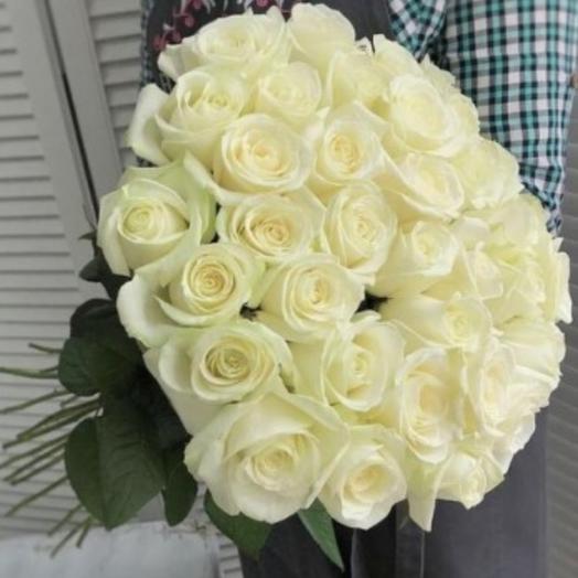 35 roses Mondial