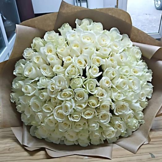 Белая Роза Премиум