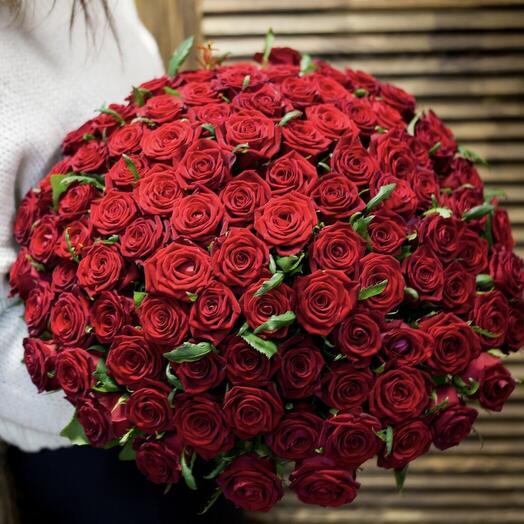 Роза Ред наоми 80см