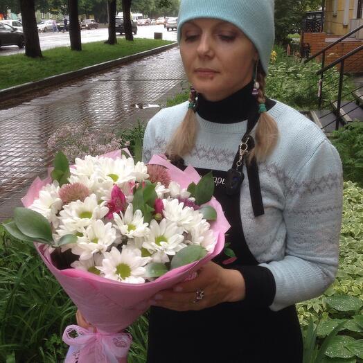 Ромашковые хризантемы в розовом