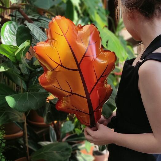 Осенний листочек