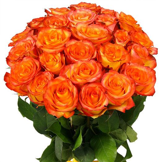 Букет из 25 огненных эквадорских роз