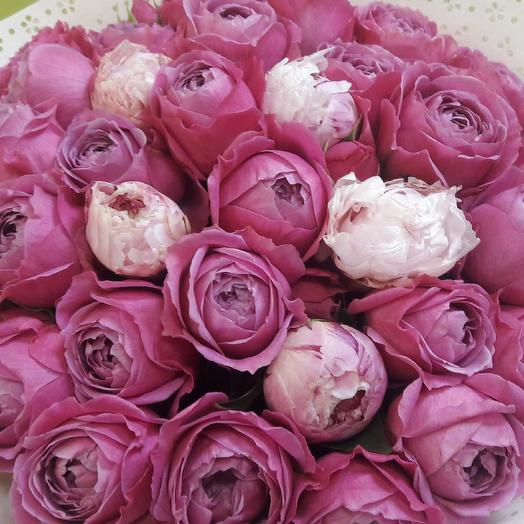 Розапиона: букеты цветов на заказ Flowwow