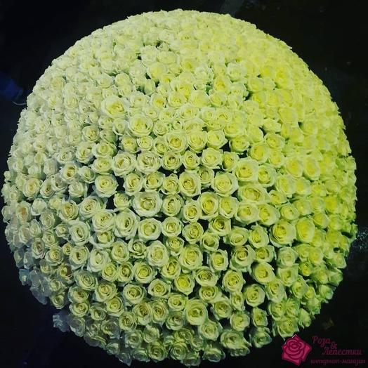 """Mr.Bouquet"": букеты цветов на заказ Flowwow"