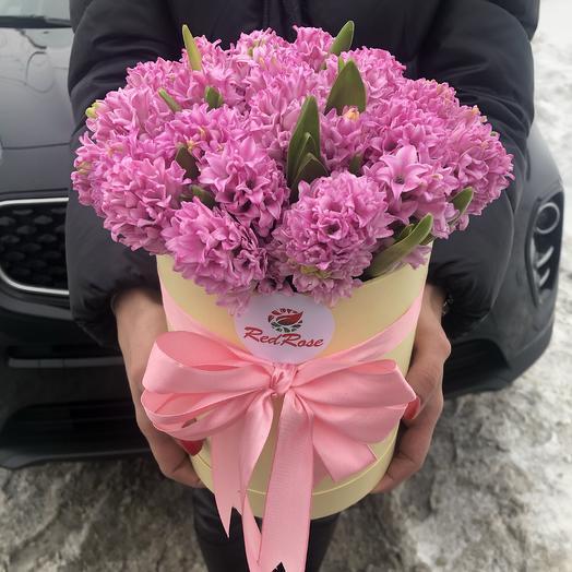 25 розовых гиацинтов в шляпной коробочке: букеты цветов на заказ Flowwow