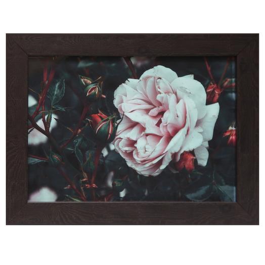 Артфотография, рама - натуральный багет: букеты цветов на заказ Flowwow