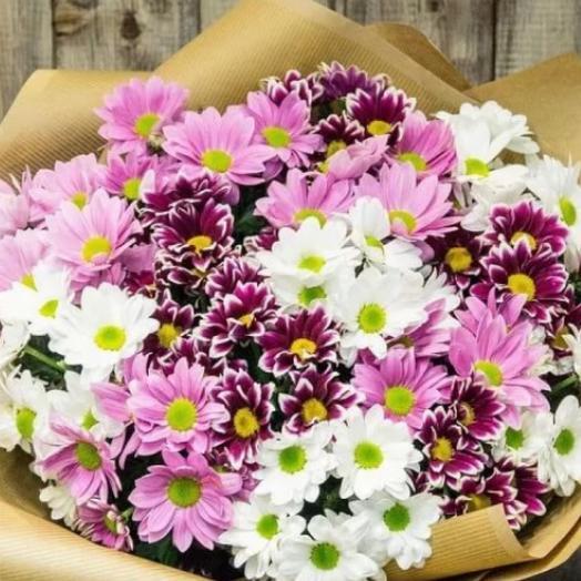 Букет из 17 веток кустовых хризантем: букеты цветов на заказ Flowwow