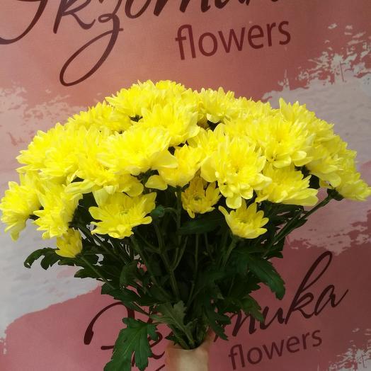 7 желтых хризантем
