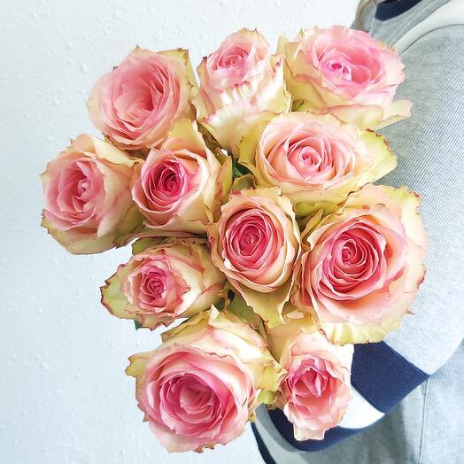 Монобукет Роза Esperance (одноголовая) 60 см под ленту - 11 шт