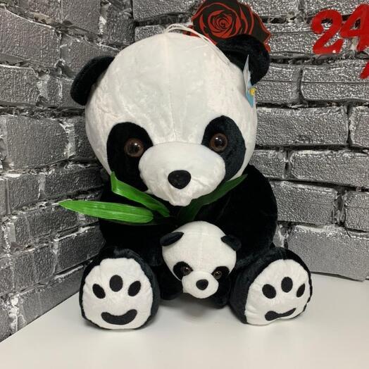 Пандачка с детенышом