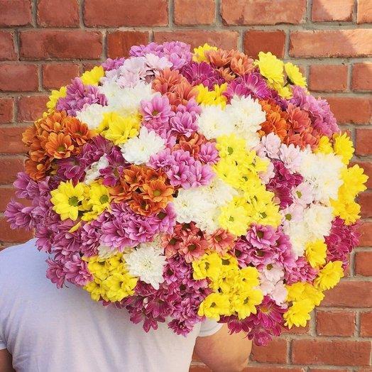 Букет из 51 разноцветной хризантемы кустовой: букеты цветов на заказ Flowwow