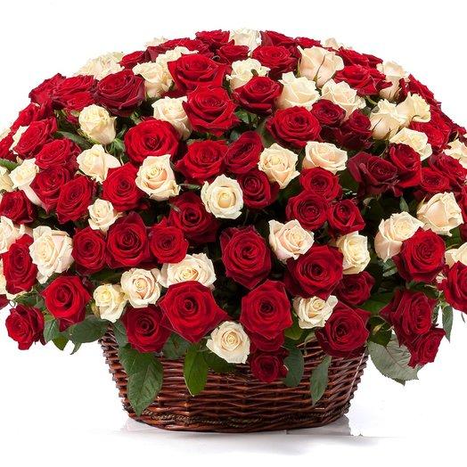 Корзина 101 роза премиум