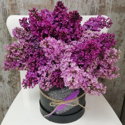 Сирень в чёрной шляпной коробке: букеты цветов на заказ Flowwow