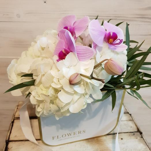 Орхидея с гортензией в коробке: букеты цветов на заказ Flowwow