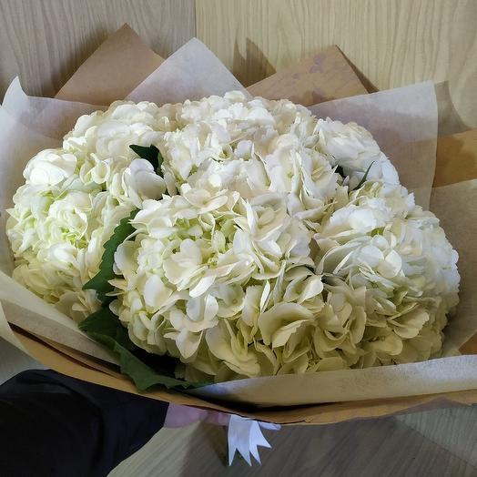 Гартензия 5Х: букеты цветов на заказ Flowwow