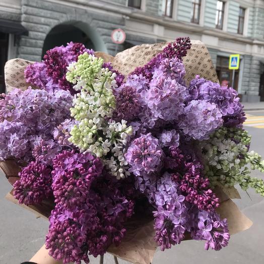 Букет ароматной сирени по супер цене: букеты цветов на заказ Flowwow