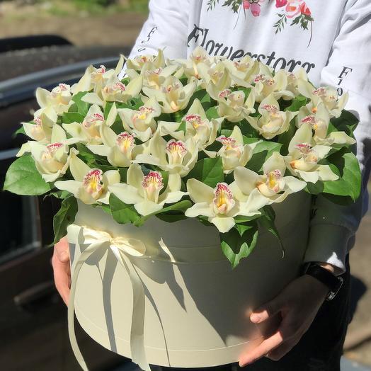 Коробки с цветами. Орхидея. Цимбидиум. N411: букеты цветов на заказ Flowwow