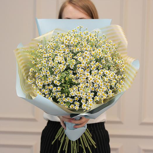 "Букет из ""21 Матрикарий"": букеты цветов на заказ Flowwow"