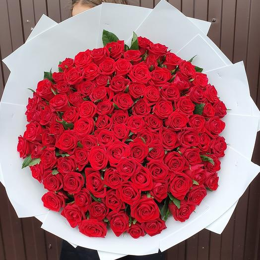 101 роза⁸