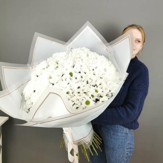Большой букет белых ромашек