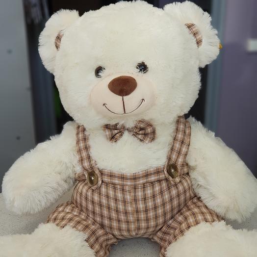 Медведь в комбинезоне 🦋