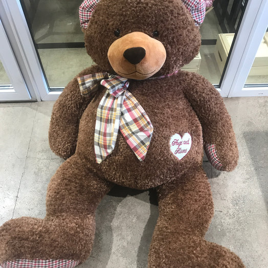 Огромный медведь 🐻 : букеты цветов на заказ Flowwow