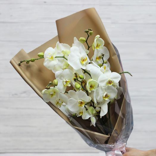Моно 35: букеты цветов на заказ Flowwow