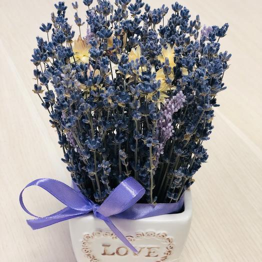 Букет лаванды в кашпо: букеты цветов на заказ Flowwow