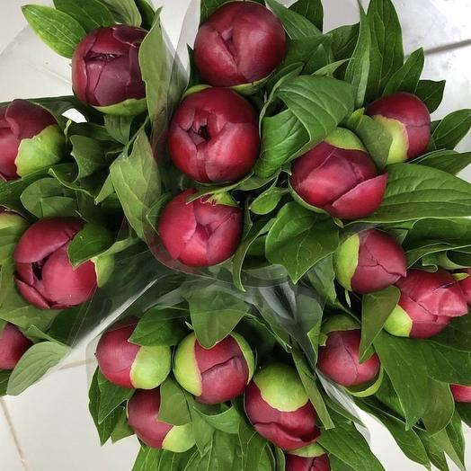 Букет пионов Люблю тебя!»: букеты цветов на заказ Flowwow